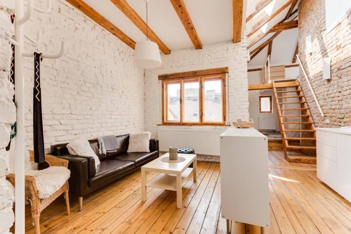 Spacious and bright romantic attic apt in Vysehrad