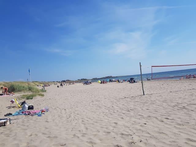 Olofsbo strand