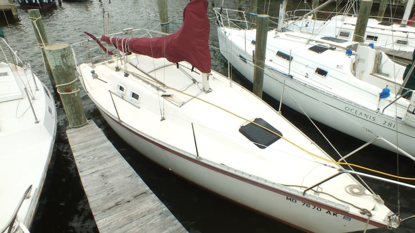 """Sea Plus Plus"" Hunter by the Bay - Edgewater - Barco"