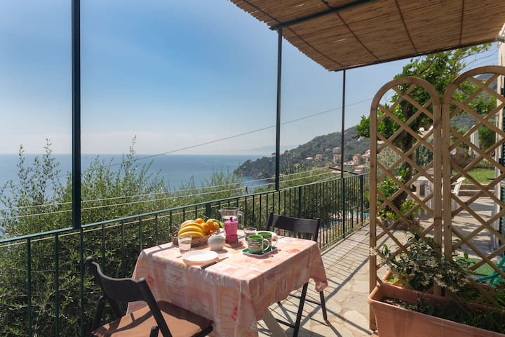 Gli Ulivi Home by the sea of Italian Riviera