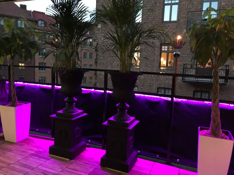 Led lights all over rooftop terrace.
