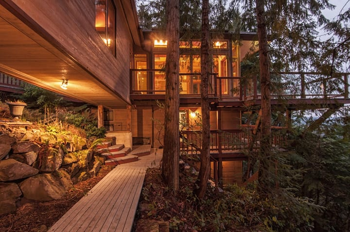 The Sanctuary: Treetop Living