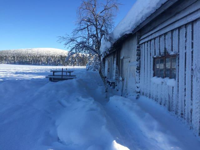 Our arctic paradise in Tjautjas