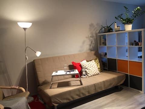 1-Zimmer-Wohnung im skandinavischen und sowjetischen Stil