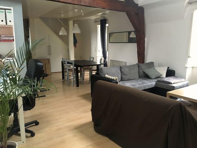 Appartement type loft dans l'hypercentre