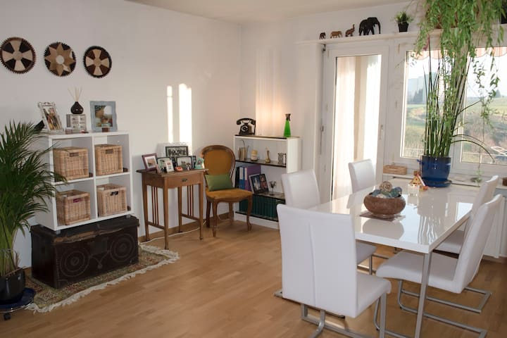 Friendly, sunny and cosy apartment - Illnau-Effretikon - Apartemen