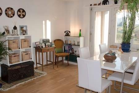 Friendly, sunny and cosy apartment - Illnau-Effretikon - Apartament