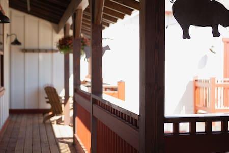 Wyatt Earp at the Los Alamos Mercantile