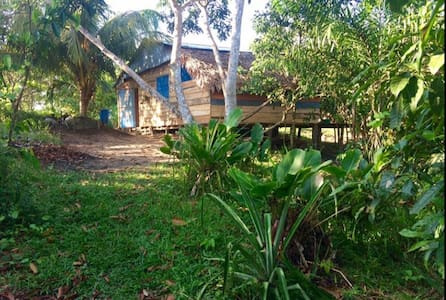 Artist home DÍÍBUÚ-Homestay in the Peruvian Amazon