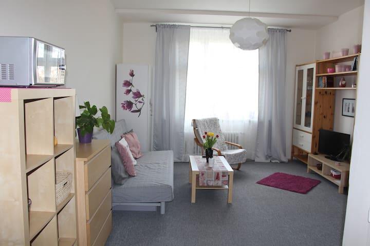Apartment near city center - Prague - Apartmen