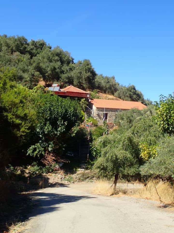 Stone house in the green paradise of Chania