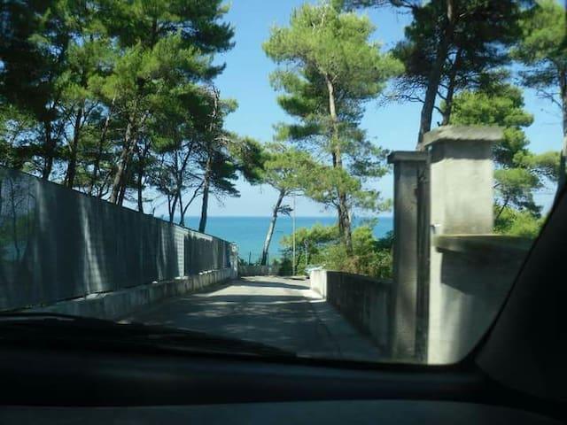 PICCOLA OASI NEL VERDE - San Menaio