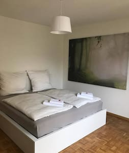 Beautiful Room close to everything - Basel