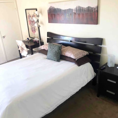 Your OWN PRIVATE MASTER SUITE with super comfortable QUEEN size bed (extra linens & towels available in linen closet). Equipped with a storage rack & closet for luggage, clothes hangers, & work desk. Free WiFi provided.