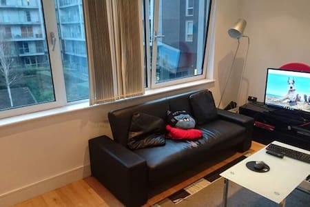 Modern Studio Flat in Canary Wharf - Londres