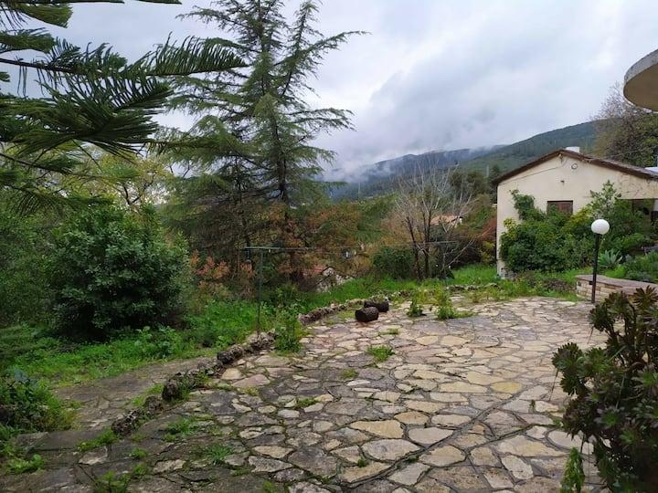 mountain view unit in amirim village