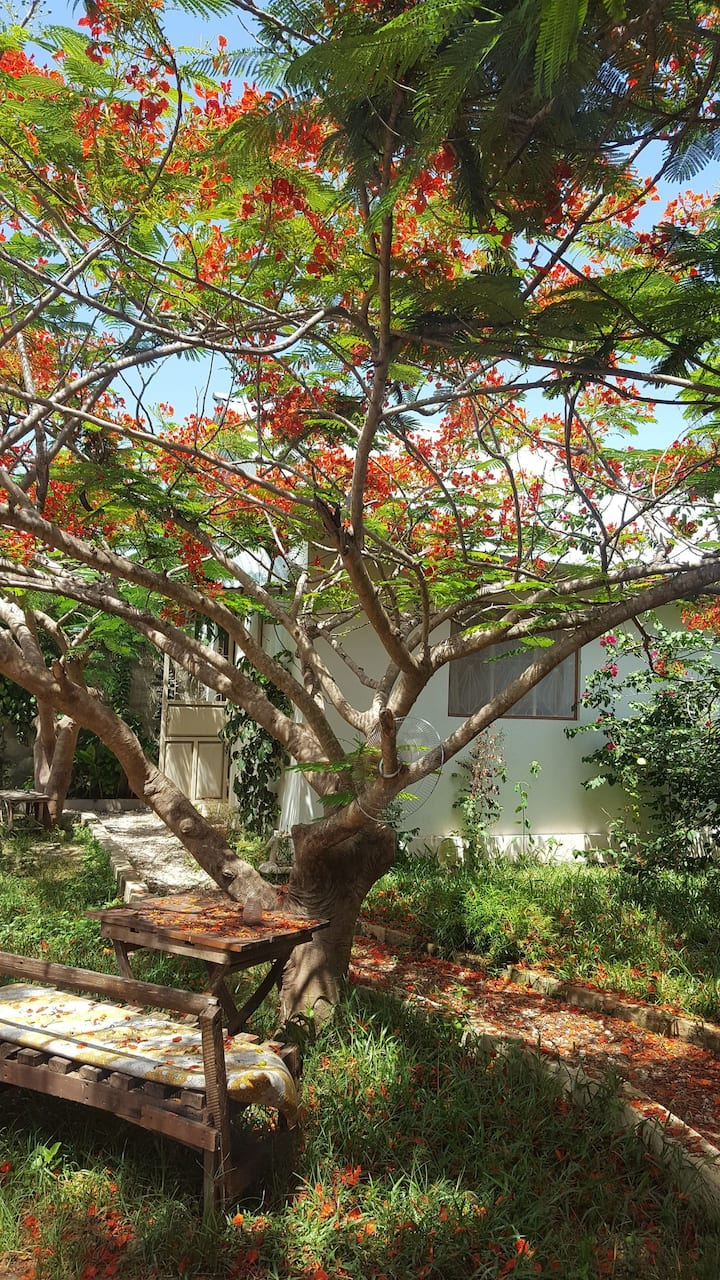 Neema Garden Lodge