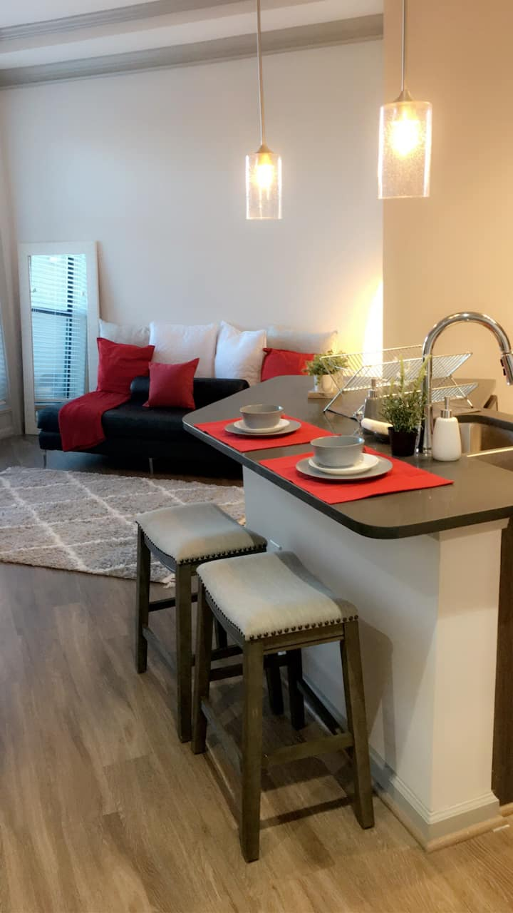 LARGE APARTMENT DOWNTOWN ATLANTA/Mercedes stadium