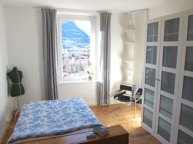 Bright and cozy room with a view - Trento - Lägenhet