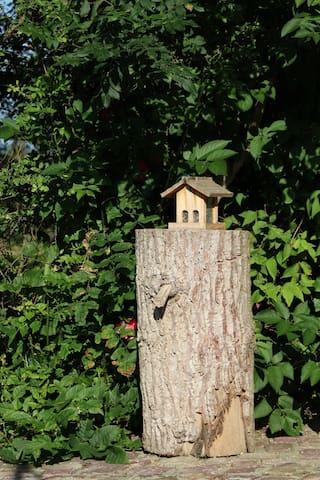 La maison des oiseaux : vous pourrez les observés depuis la chambre