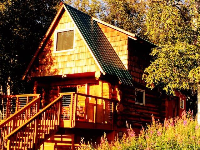 Log cabin retreat, with stunning views