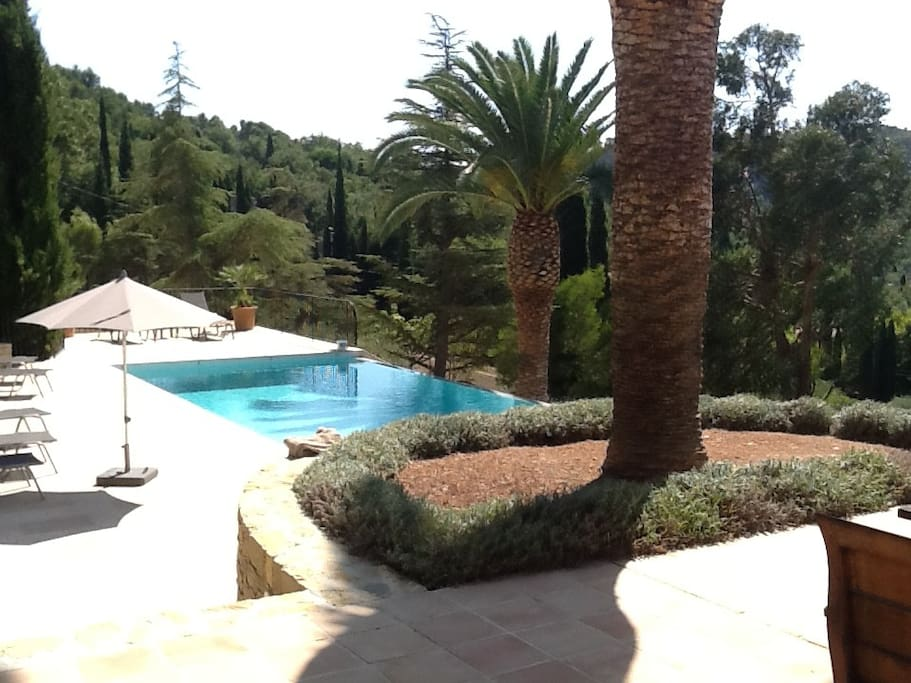 Pool towards garden