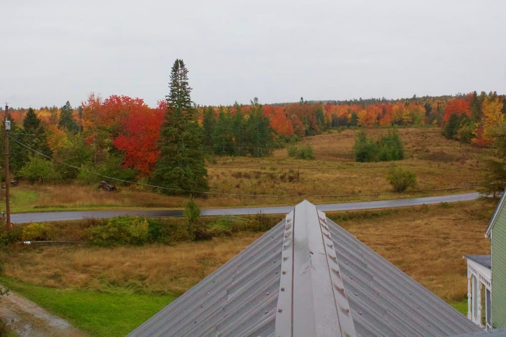 View from the garage cupola of autumn colors.