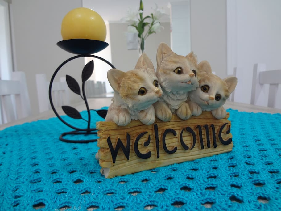 Bem vindos