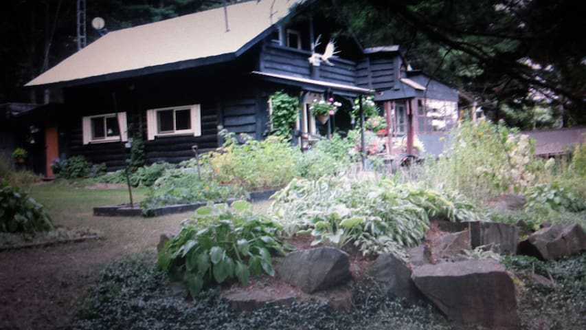 Charming Lakeside Chalet&Cabin bnb - Coe Hill - Bed & Breakfast
