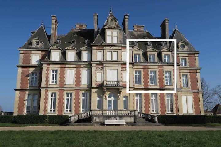 Duplex dans Château 40mn de Paris, 20mn de Disney - Ocquerre - Замок