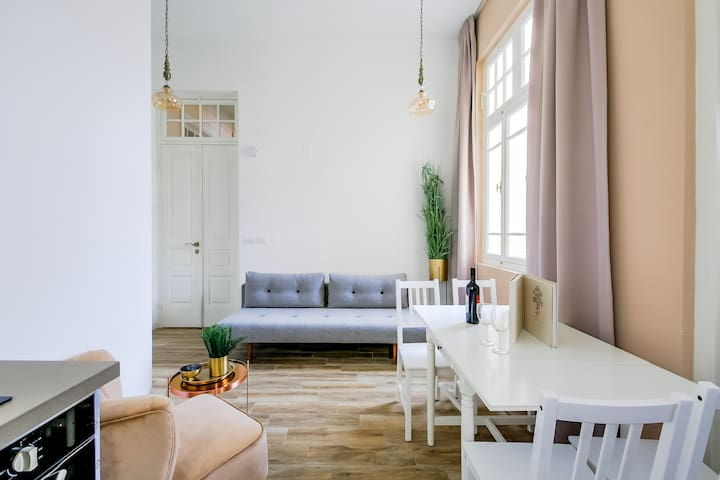 Luxurious Apartment in Nahalat Binyamin - Carmel
