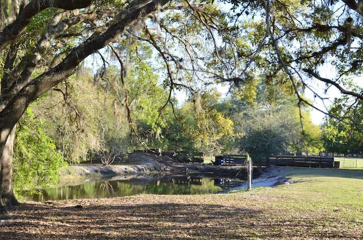 Peaceful Ranch Vacation Near Lake Placid!