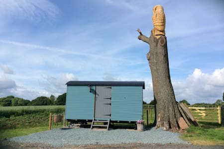 The Hoot - Cosy Shepherds Hut