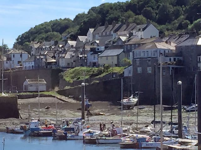 Cornish cottage near the old harbour, Newlyn - Newlyn - Hus