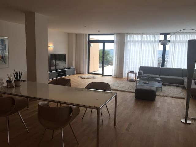 Einzigartiges Loft in Bonn- Bad Godesberg