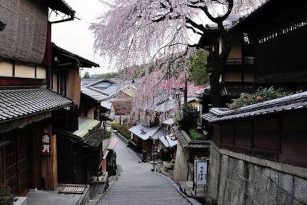 Easy To Access  Kyoto And Osaka