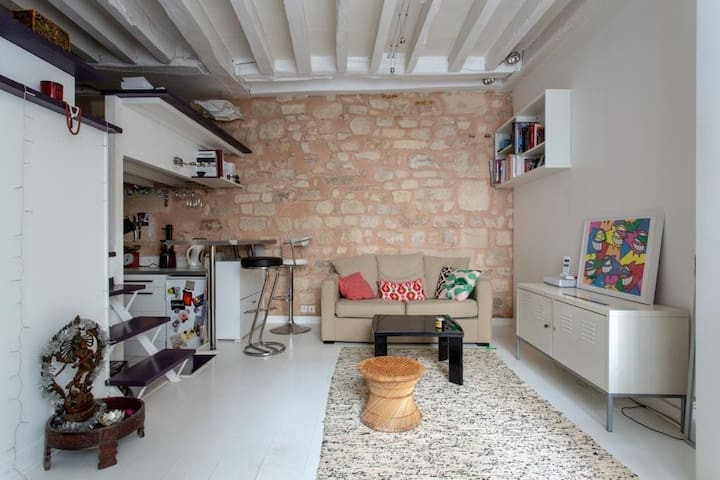 Lovely & cozy studio in Le Marais