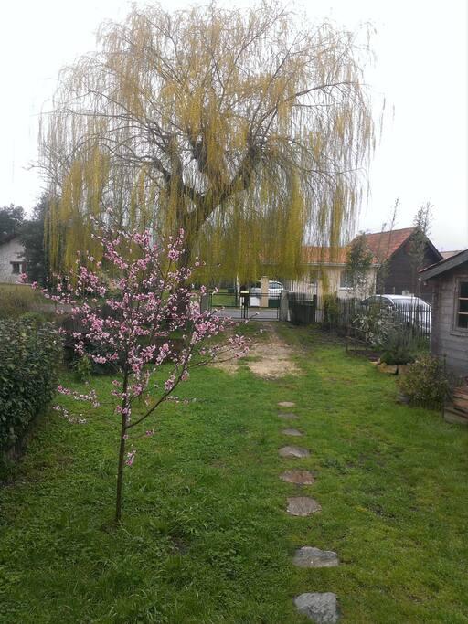 L'entrée du jardin au printemps