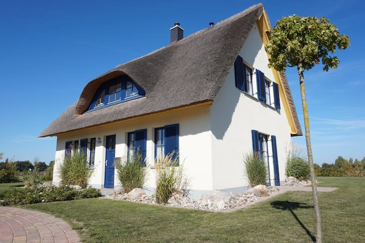 Lachmöwe Ferienhaus - Zierow