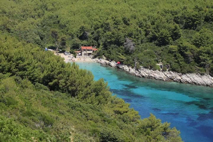 Two bedroom apartment near beach Zavalatica, Korčula (A-9234-a) - Čara