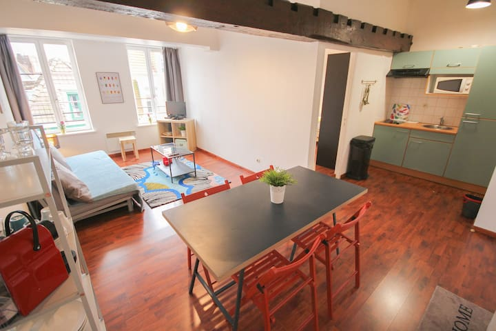 Vieux Lille Superbe appartement rue Chats Bossus
