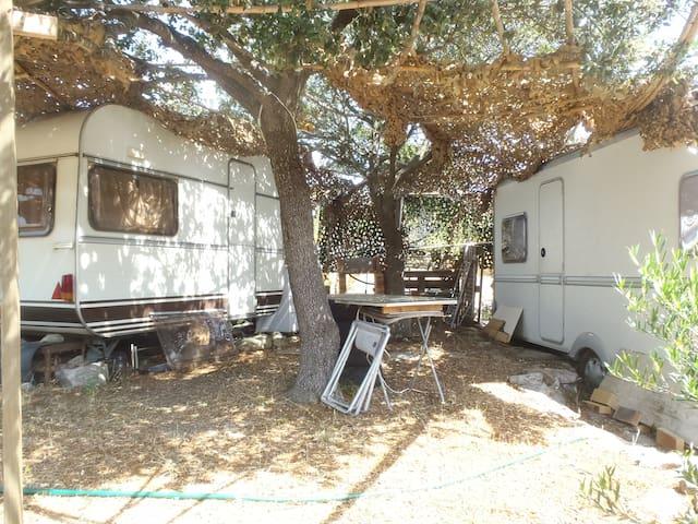 Location deux caravanes équipées jumelées - Morosaglia