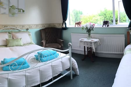 Bow House Bed & Breafast - Earl Shilton - Bed & Breakfast