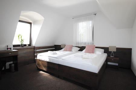Penzion&Wellness Zoborska Double Room