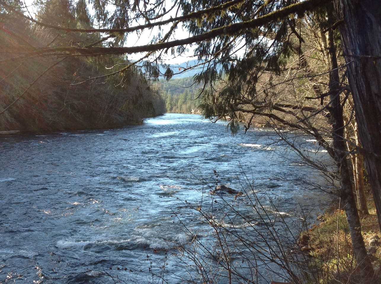 The Beautiful Mckenzie River off of your Deck
