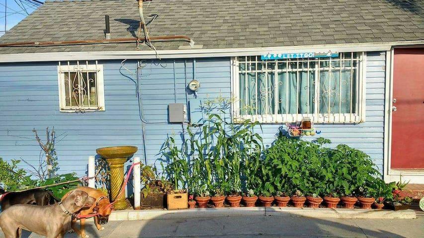 Cozy Bungalow 1.5 blocks to beach! - San Diego - Huis