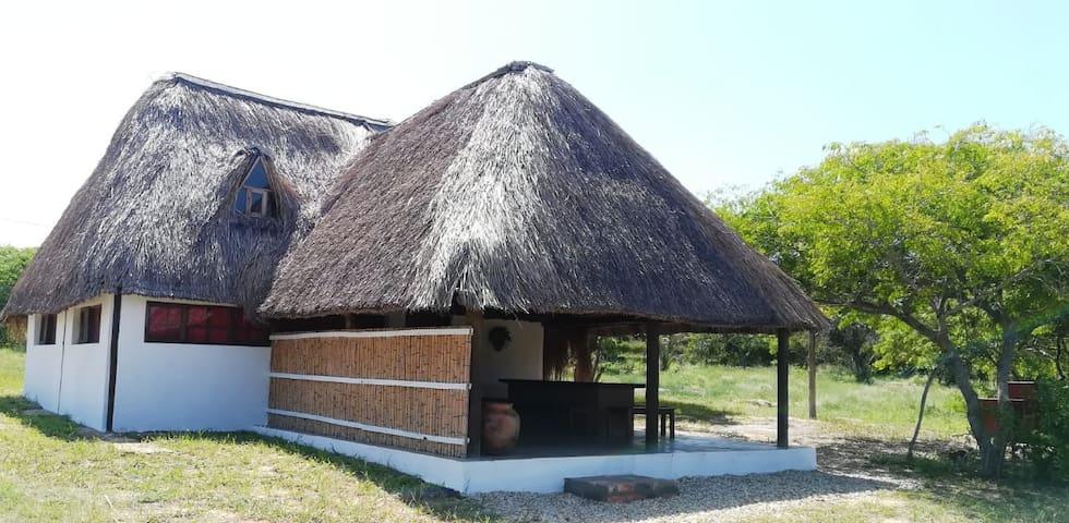Catalina cottage