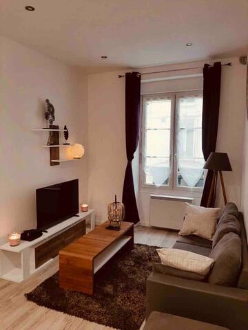 Appartement hyper centre Poitiers