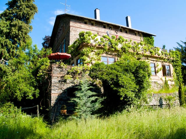 Casa Stolte - Traben-Trarbach - Apartmen