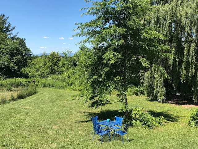 Incredible sunsets and view of Catskill mountains. Hammock and place to eat in your own yard. Also have corn hole and croquet. Huge yard.